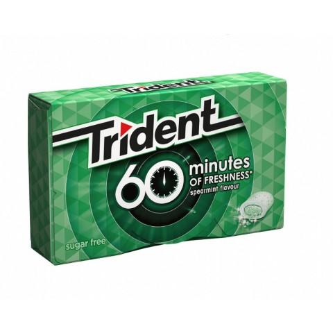 Chicles trident 60 minutos sabor hierbabuena 16u.
