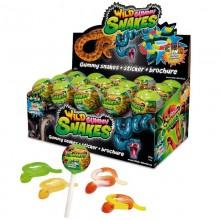 Wild Gummy Snakes 15u.